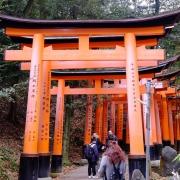 Fushimi Inari Kyoto